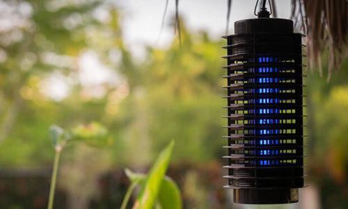 Top 5 đèn bắt muỗi tốt nhất thật sự bắt được muỗi