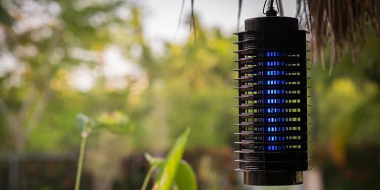 Đèn bắt muỗi loại nào tốt và thực sự diệt được muỗi? 1