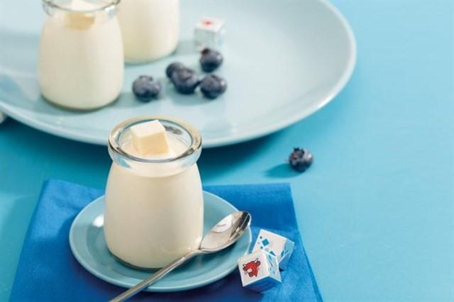 Sữa chua phô mai – món ngon hấp dẫn cho các bé
