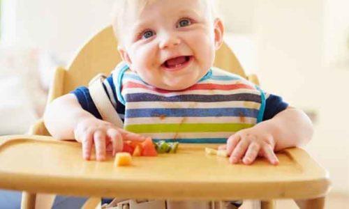 Top 5 ghế ăn dặm tốt nhất dành cho các bé mà mẹ bỉm có thể tham khảo 2