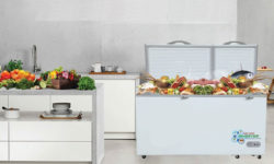 Top 5 mẫu tủ đông loại nào tốt dành cho hộ gia đình và hộ kinh doanh nhỏ 28