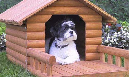 """Top 5 chuồng chó tốt nhất dành cho """"Boss"""" của bạn 2"""