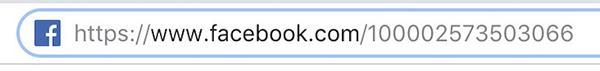 Dán mã ID lên link URL để tìm kiếm tài khoản Facebook chính xác