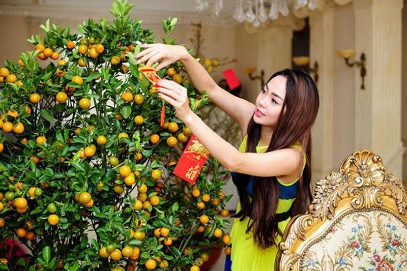 Chăm sóc cây quất đúng cách để cây được xanh tốt trong ngày Tết.