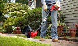 Top 5 máy cắt cỏ cầm tay tốt nhất cho khu vườn của bạn 63