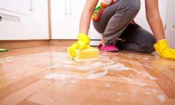Top 5 nước lau sàn tốt nhất cho sàn nhà sạch bóng 71