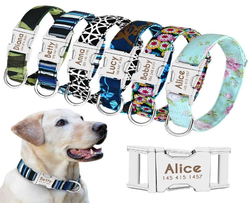 Vòng đeo cổ cho chó được phân thành nhiều loại khác nhau