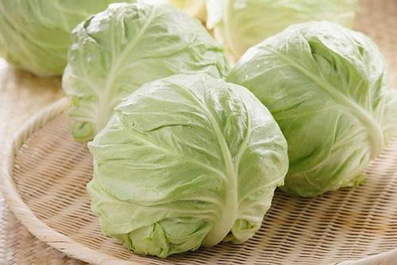 Bắp cải là thực phẩm được khuyến cáo nên dùng cho mẹ bầu.
