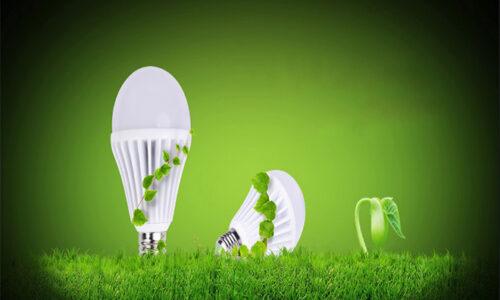 Top 6 bóng đèn được nhiều gia đình sử dụng nhất 2021