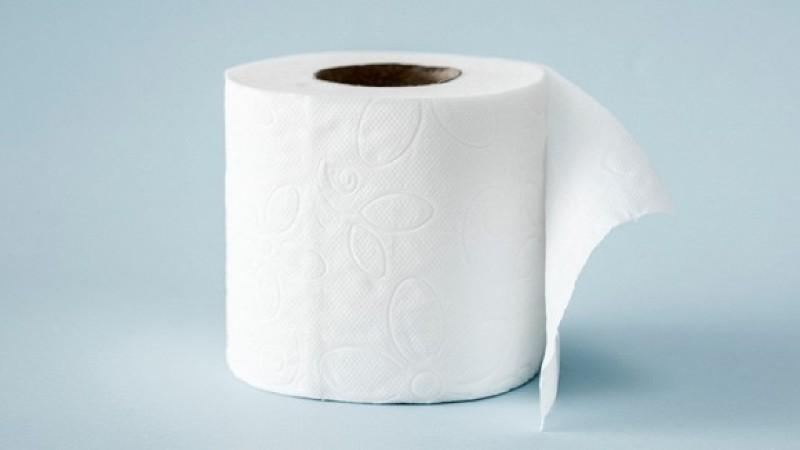 Các loại giấy vệ sinh hiện nay