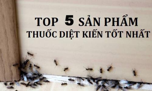 Top 5 thuốc diệt kiến tốt nhất 2021