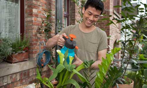 Top 5 bình xịt tưới cây tốt nhất giúp bạn chăm sóc cây trồng hiệu quả 1