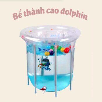 Bể bơi thành cao Doctor Dolphin
