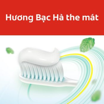 Top 5 kem đánh răng giúp bạn luôn có hàm răng chắc khỏe 12