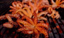 Cách làm bạch tuộc nướng siêu ngon