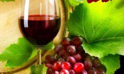 Rượu nho tốt cho hệ tim mạch