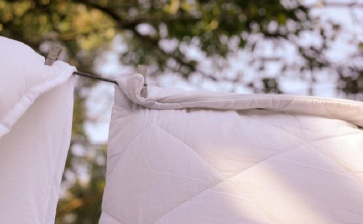 Phơi chăn mền dưới ánh nắng nhẹ