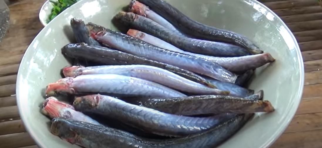 Cách làm cá kèo kho rau răm đặc biệt thơm ngon 1