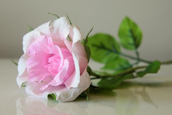 Cách làm hoa hồng giấy cắt bo tròn