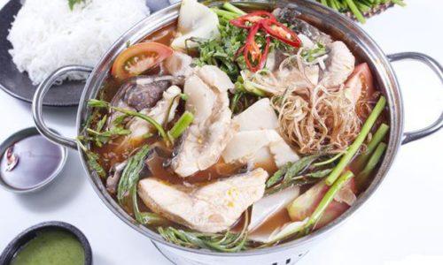 Cách nấu lẩu cá bớp không tanh thơm như nhà hàng