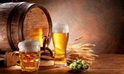 Những thành phần có trong bia