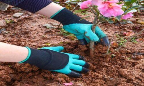 Top 8 găng tay làm vườn tốt nhất 2021