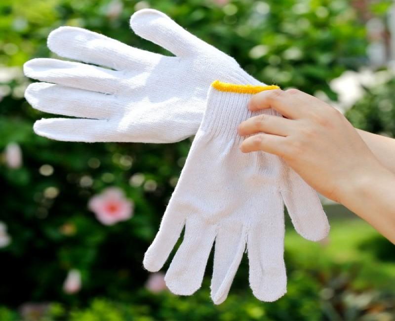 Tư vấn chọn mua găng tay làm vườn