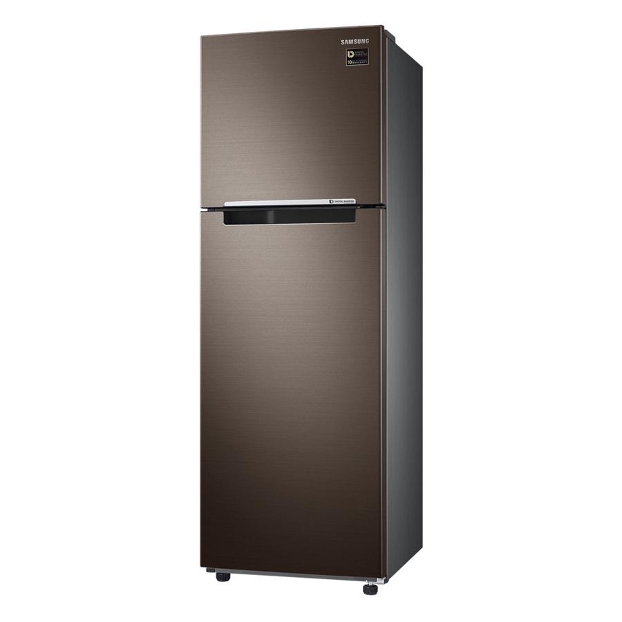 Tủ lạnh hai cửa Samsung RT25M4032DX