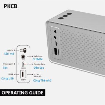 Loa Bluetooth Speaker 10W PKCB2