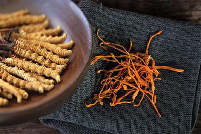 Công dụng của đông trùng hạ thảo là ngăn ngừa ung thư